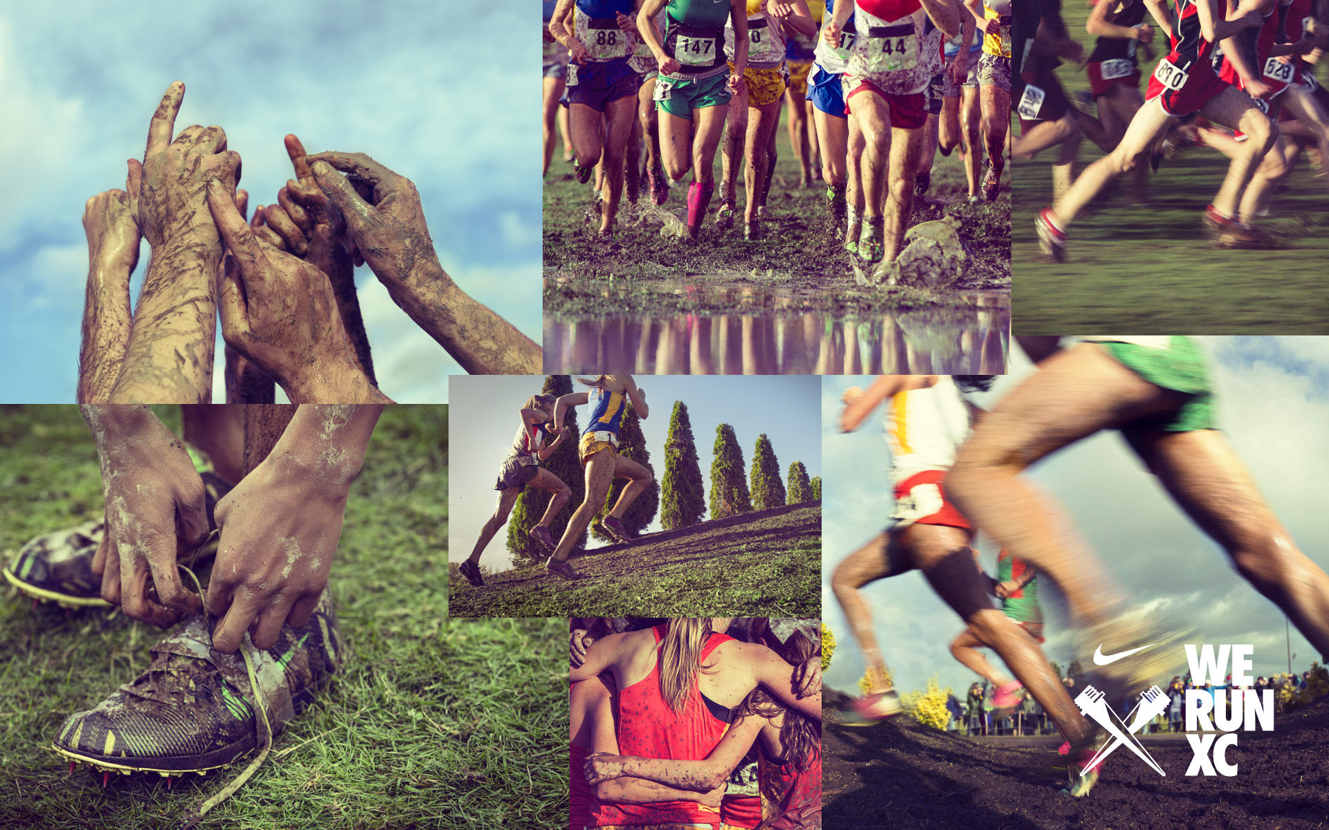 Cross Country BGSU Athletics