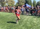 DyeStat.com - News - St. Helena Standout Harper McClain Dazzles in Cross Country Debut at Ed Sias Invitational