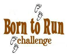Born to run (pour de vrai...) 11228_full